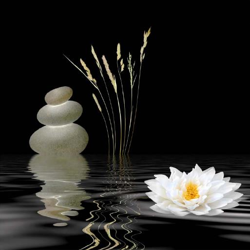 Beauté Zen Thérapie ou Les Essentiels du Bien-Être