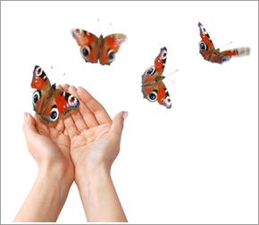 Transformez Votre Vie
